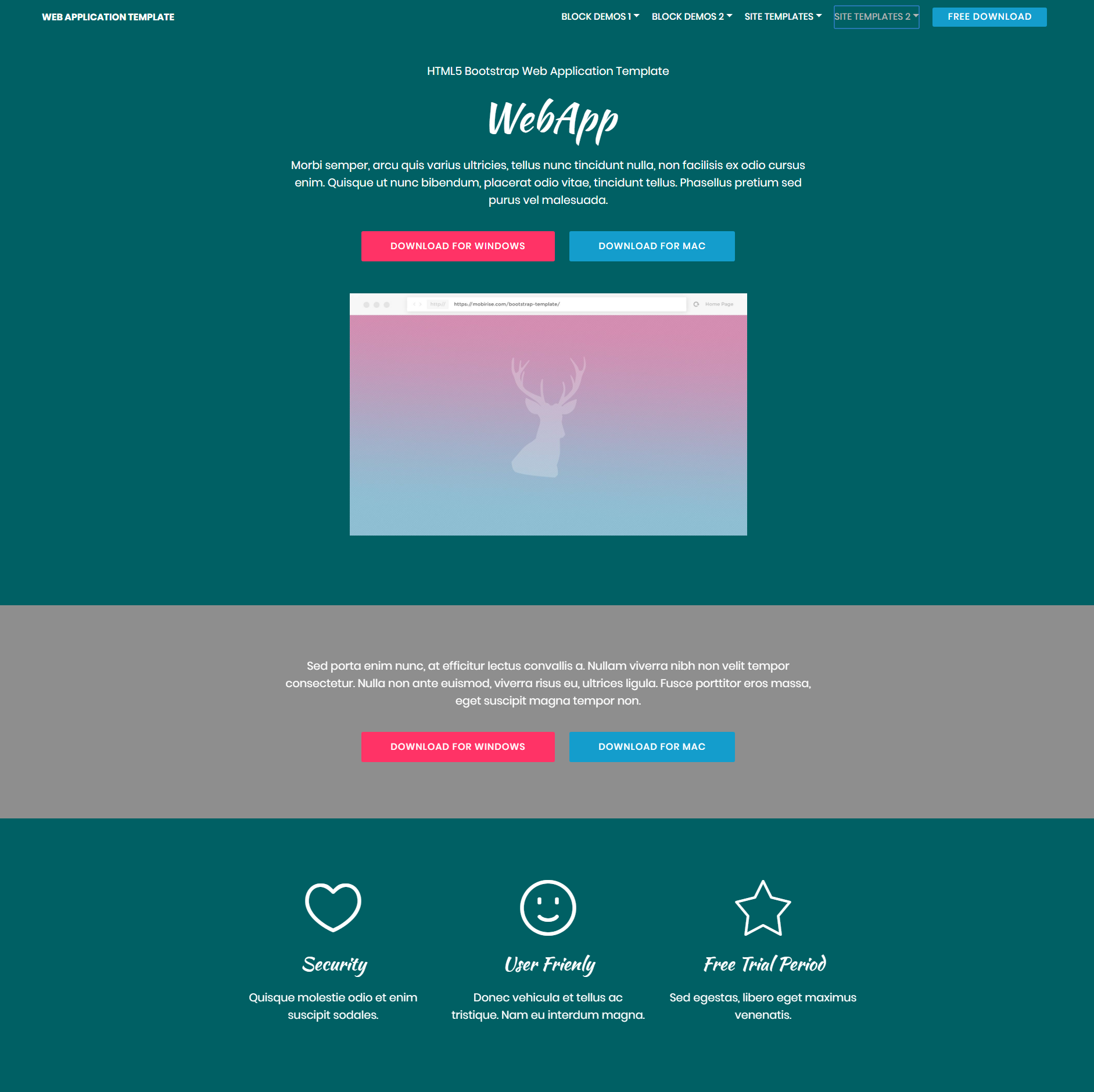 Responsive Bootstrap Web application Templates