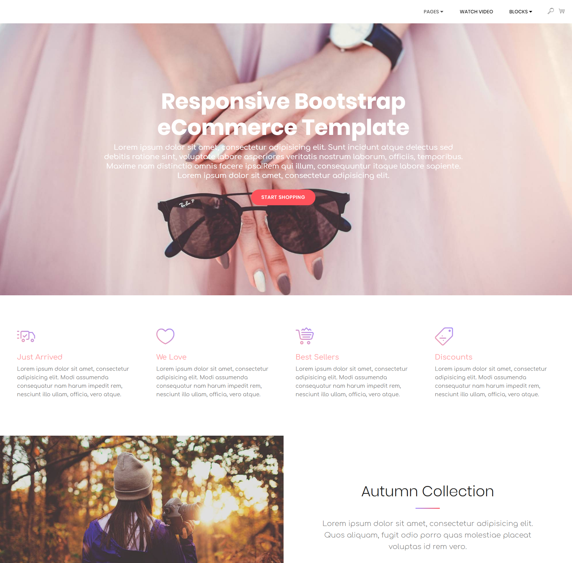 CSS3 Bootstrap Responsive eCommerce Themes